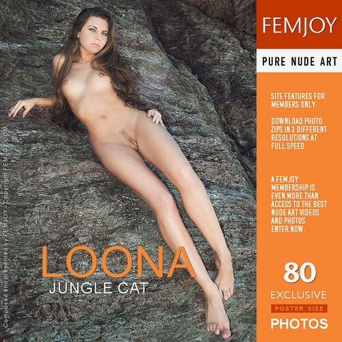 Loona - Jungle Cat (x80)