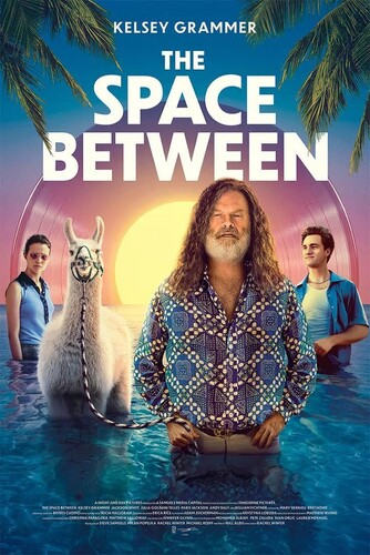 The Space Between 2021 1080p WEB-DL DD5 1 H 264-CMRG
